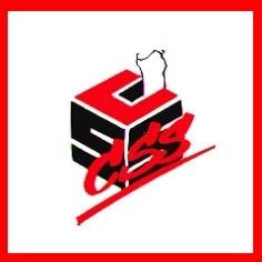 Su Sindacadu de sa Natzione Sarda, scuola, lingua sarda, limba sarda. legge regionale, consiglio regionale, commissione, irs, psd'az,
